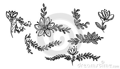 Leaves and flowers ornaments 1