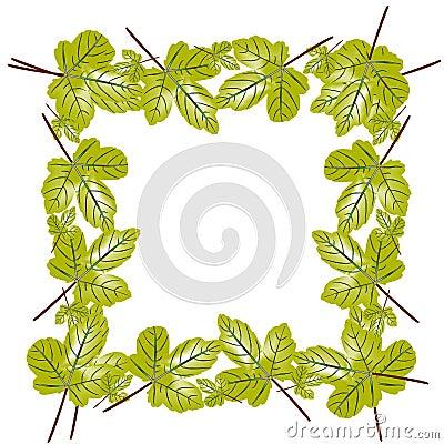 Leaves foliage