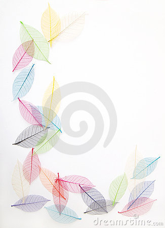 Free Leaves Frame In Pretty Colors Royalty Free Stock Images - 20990819