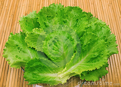 Leaves of fresh lettuce and water drops