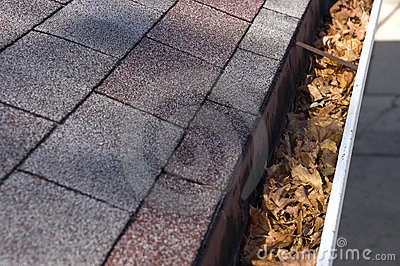 Leaves in Gutter, Home Maintenance and Repair