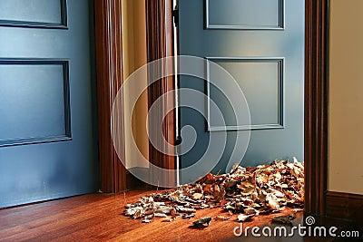 Leaves indoors
