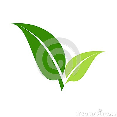 Leaves logo, vector Vector Illustration