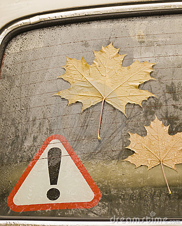 Leaves of a maple on glass of the automobile