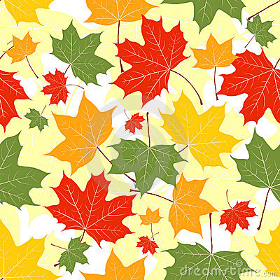 Leaves of a maple on yellow.