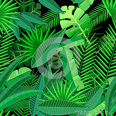 Free Leaves Of Tropical Palm Tree. Seamless Pattern On Royalty Free Stock Photography - 55436567