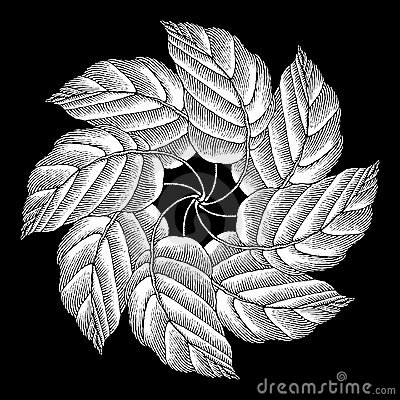 Leaves rosette original woodcut