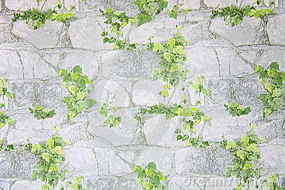 Leaves on stone wallpaper