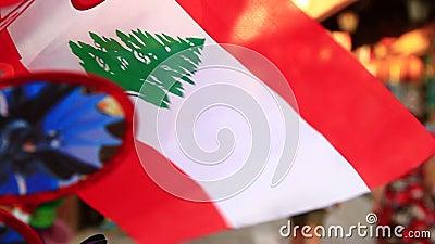 Lebanon Flag stock footage