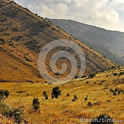 Free Lebanon Landscape 01 Stock Image - 18118921