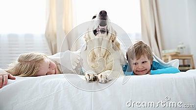 Leben von inländischen Haustieren in der Familie kleiner Bruder und Schwester liegen mit ihrem Hund auf dem Bett im Schlafzimmer stock video footage