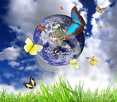 Lebende Erde