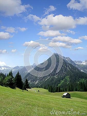 Lechtal alps