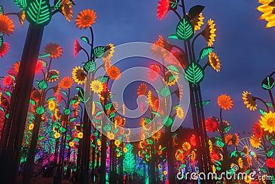 Led Festival Light.