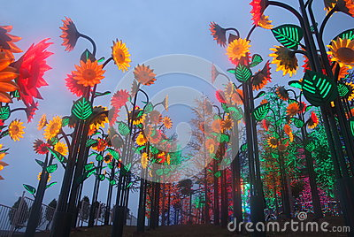 Led Light festival