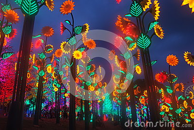 Led Light Festival