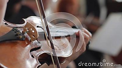 Leef overleg, vrouwenspelen op houten viool klassieke muziek op een vage achtergrond stock video
