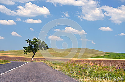 Leeren Sie Landschaftsstraße