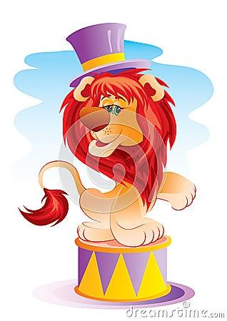 Leeuw in circus
