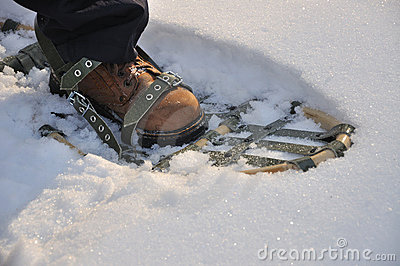 Leg with traditional snowshoes