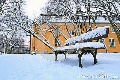 Lege bank in het park bij de sneeuwwinter