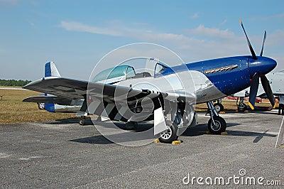 Legendary Mustang P-51 fighter