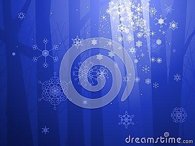 Legno incantato di inverno