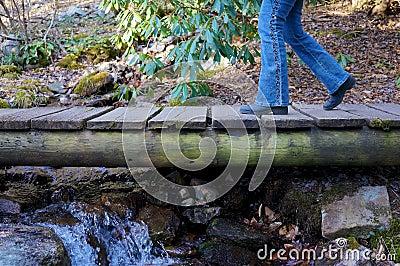 small foot stream kinox