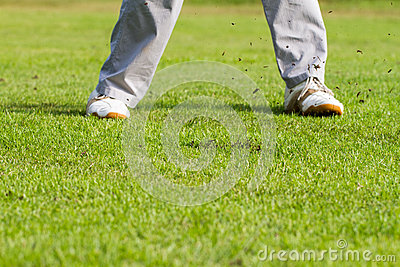 Legs of golfer on green field