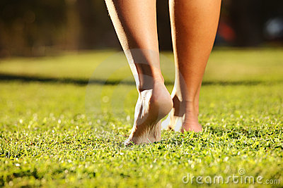 Legs on the grass
