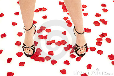 Legs with shoes on rose pedals