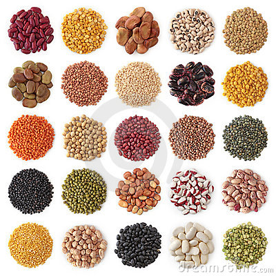 Free Legume Collection Stock Photo - 23256210
