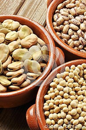 Legumes detail