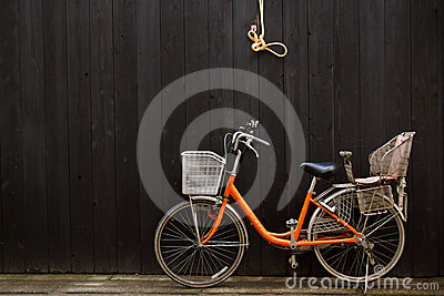 Leisure Bicycle in front of black wooden fence
