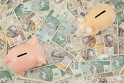 Leitão com dinheiro
