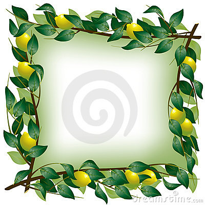 Lemon branch frame
