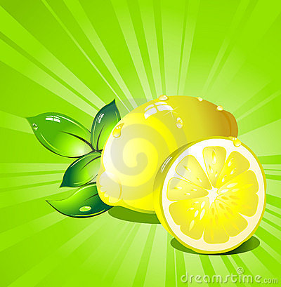 Lemon  citrus fruit. Vector.