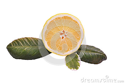 Lemon half with green leaves on a white background