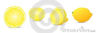 Lemon illustration collection