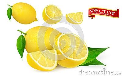 Set of ripe juicy lemon whole and lobule realistic vector high detail. Lemon juice Fresh fruit, 3d vector icon. Vector Illustration