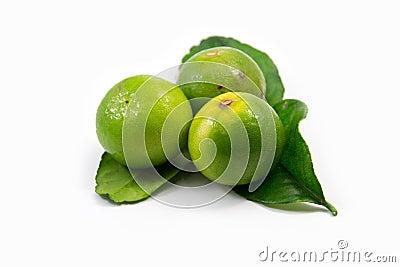 Lemon and kaffir lime leaves