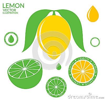 Lemon. Lime Vector Illustration