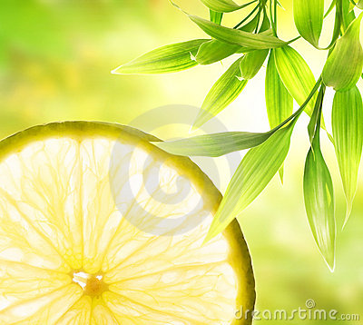 Free Lemon Slice Royalty Free Stock Image - 6927106