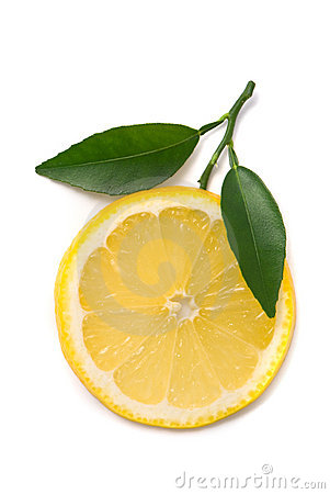 Lemon slice with fresh leaves