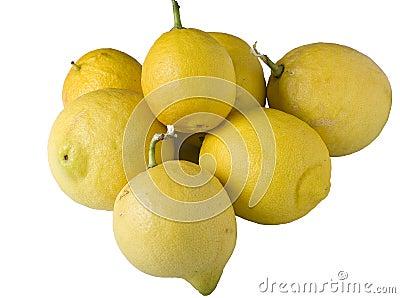 Lemons Bunch