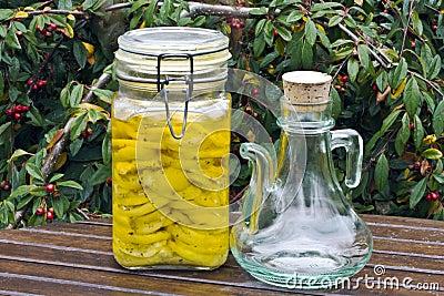 conserved lemons