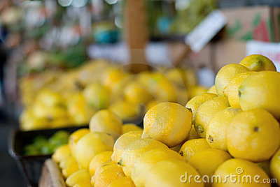 Lemons at the Farmer s Market