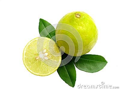 Lemons-Isolated