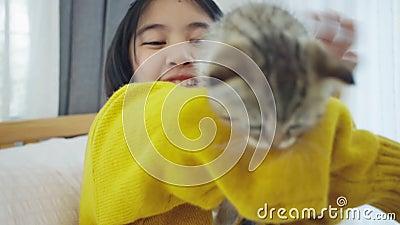 Lent mouvement Fermeture de Lovely Asian jouant avec un chaton mignon, jolie fille tenant un chat à l'intérieur banque de vidéos