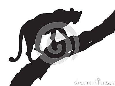 Leopard-Baum
